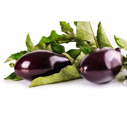 Aubergines bio 1pc