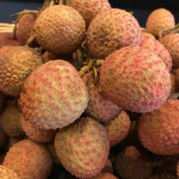 Litchis non traités 100g