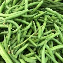 Haricots Verts fins 200g