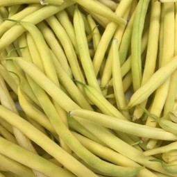 Haricots Beurre 100g