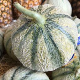 Melons de Cavaillon - 1pc ±1.1kg
