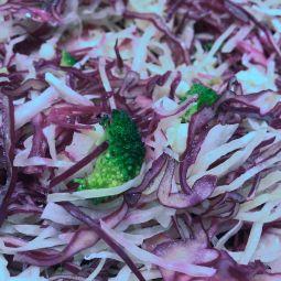 Salade Santé par 100g