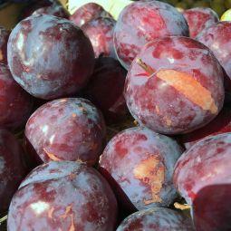 Prunes Fortunes - 1pc ±110g
