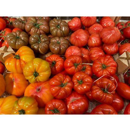 Mélange de Tomates Soleil 1kg