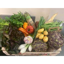 Petit panier de légumes de printemps ±4kg