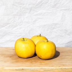 Pommes Chanteclerc BIO - 1pc ±220g