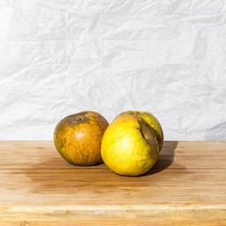 Pommes Reinette Bio - 1pc ±500g