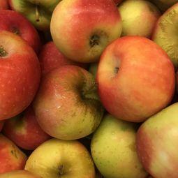 Pommes Ariane Bio 1pc