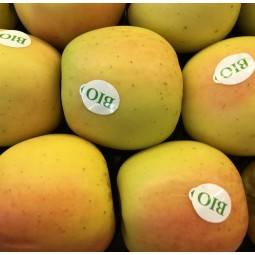 Pommes Opal Bio 1pc