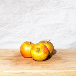 Pommes Boskoop bio 1pc