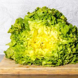 Salade Scarole bio 1pc