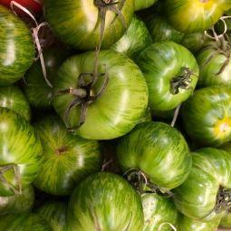 """Tomates """"Green Zebra"""" 500g"""
