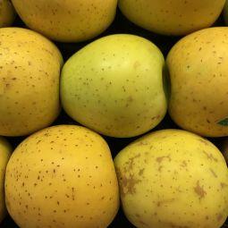 Pommes Delisdor BIO 0g