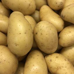 Pommes de terre Amandines 500g
