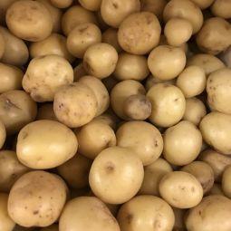Pommes de terre Sirtema noirmoutier 500g