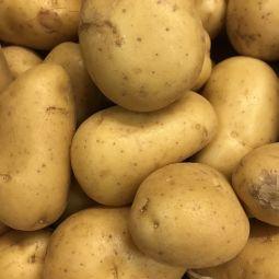 Pommes de terre Charlottes BIO 500g